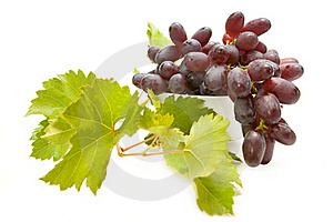 Grapes Royalty Free Stock Image - Image: 16089046