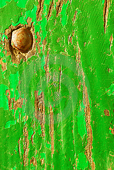 Green Wood Texture Stock Photo - Image: 16089460