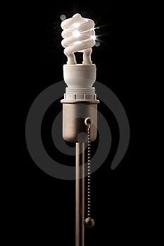Bulb Stock Photo - Image: 16089930