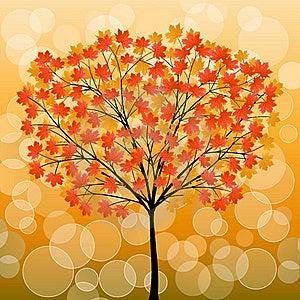 Autumn Tree Royalty Free Stock Photography - Image: 16095907