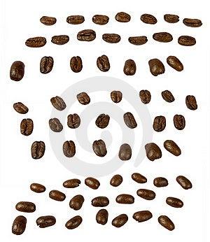 Coffee Grains Stock Photo - Image: 16096680