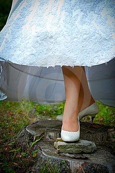 Leg Of Fiancee Stock Photo - Image: 16099780