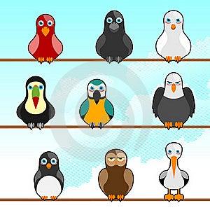 Cartoon Birds Stock Photo - Image: 16148680