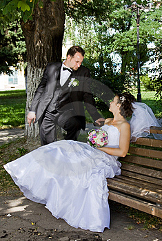 Bride And Groom Stock Photography - Image: 16171272