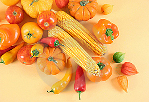 Agriculture Royalty Free Stock Photo - Image: 16176555