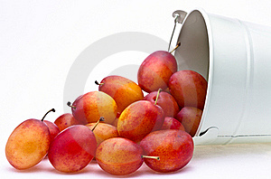 Plums Spilling From A Container Stock Photos - Image: 16179463