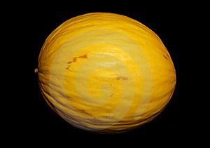 Honeydew Melon Royalty Free Stock Photo - Image: 16180705