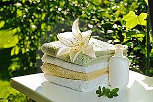 Morning Freshness Royalty Free Stock Photos - Image: 16196358