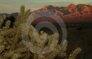 A Days Ending In The Desert Royalty Free Stock Image - Image: 1625806