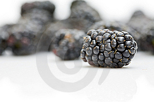 Blackberry Stock Photography - Image: 16220612