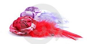 Bird Feather Hair Clips Royalty Free Stock Photos - Image: 16221398