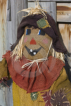 Scarecrow With Fence Stock Photos - Image: 16224383
