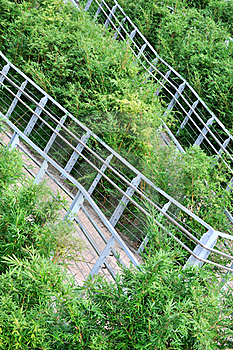 Circuity Path In Bush Royalty Free Stock Image - Image: 16227536