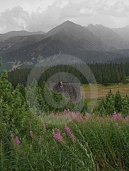 Mountain Pasture Royalty Free Stock Photos - Image: 16235948