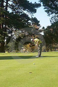 Golfer On The Putting Green Stock Images - Image: 16236394