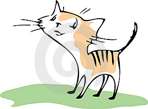 Cat Royalty Free Stock Photo - Image: 16237385