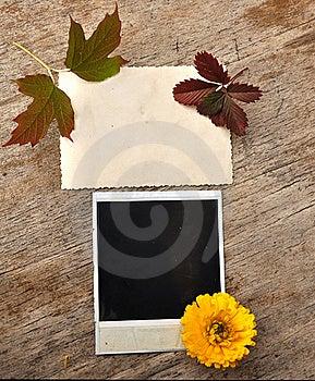 Blank Photo Frame Stock Photo - Image: 16239070