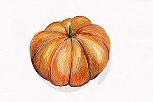 Illustration, Single Pumpkin Royalty Free Stock Photo - Image: 16248705