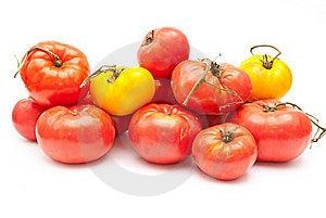 Eco Tomatoes Royalty Free Stock Photo - Image: 16250445