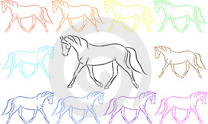Fun Rainbow Horses Stock Photos - Image: 16250753
