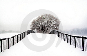Snowy Morning Stock Photo - Image: 16265640