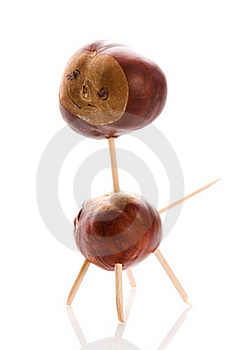 Chestnut Toy Royalty Free Stock Photo - Image: 16270405