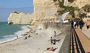 La Falaise D'Amont-Etretat-the Gull's Land Stock Images - Image: 16282594