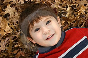 Boy In Leaves Royalty Free Stock Image - Image: 16287456