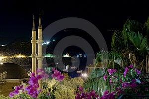 Tropical Night Stock Photos - Image: 1632653