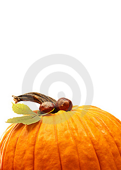Halloween Decoration Stock Images - Image: 16309314