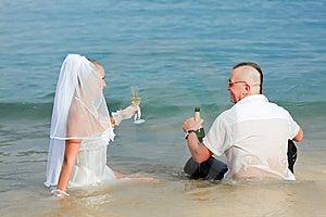 Tropical Wedding Stock Image - Image: 16316031