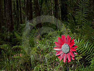 Fake Flower In The Woods Right Royalty Free Stock Photo - Image: 16320295