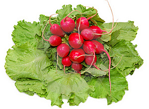 Garden Radish Bunch On Green Leaves Royalty Free Stock Photos - Image: 16322388