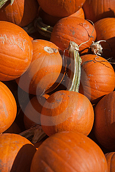 Pumpkins Royalty Free Stock Image - Image: 16326476