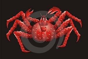 Far Eastern Crab Royalty Free Stock Photos - Image: 16329228