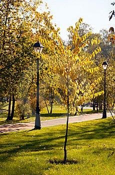 Autumn Park. Stock Photography - Image: 16341182