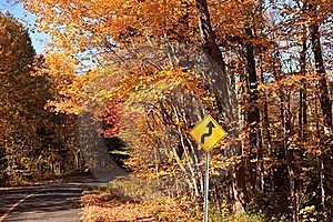 Fall Color Road Drive Royalty Free Stock Image - Image: 16342216