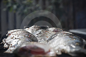Raw Fish Grill Royalty Free Stock Image - Image: 16342916