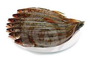 Fresh Raw Fish Royalty Free Stock Image - Image: 16346706