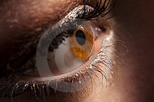 Woman`s Brown Eye Peeping In Darkness Royalty Free Stock Photography - Image: 16377267