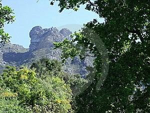 Castle Rock Seen Through Trees Stock Photos - Image: 16394353