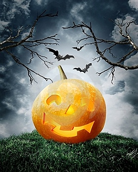 Halloween Pumpkin On Field. Royalty Free Stock Image - Image: 16394836