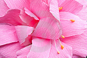 Paper Flower Royalty Free Stock Photos - Image: 16397208