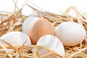 Nest Of Brown And White Eggs Royalty Free Stock Image - Image: 16419656