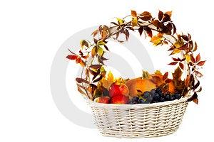 Autumn's Basket Stock Photos - Image: 16429783