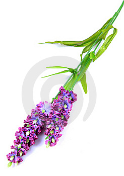 Flower Sticks Stock Photo - Image: 16442380