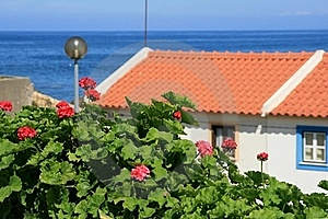 View On Roof And Ocean Royalty Free Stock Photography - Image: 16450487