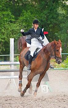 Jockey Riding A Horse Stock Photo - Image: 16454960