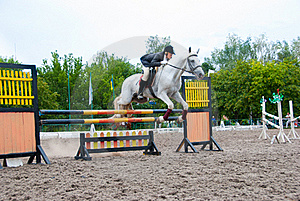 Jockey Jumps Over A Hurdle Royalty Free Stock Image - Image: 16454976