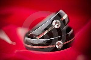 Donkere Trouwringen Op Rode Bloemblaadjes Stock Foto - Afbeelding: 16461520